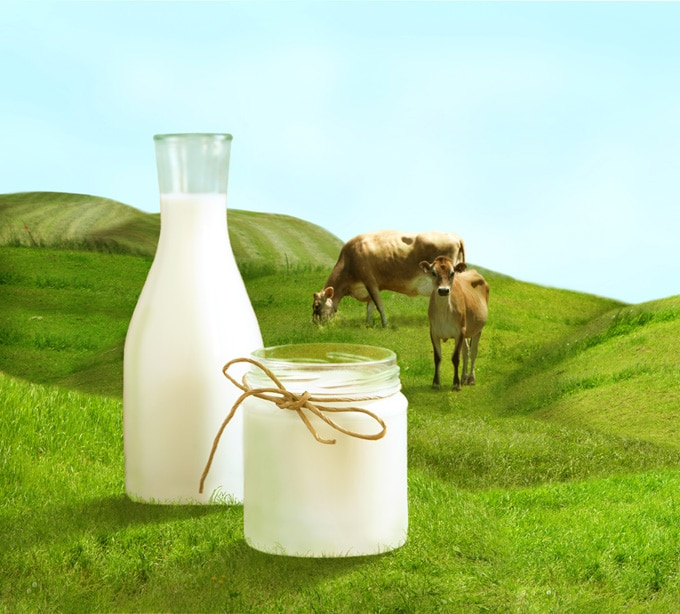Raw Grass-Fed Whey Protein!