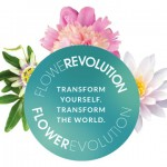 Transform Your Life with Flower Remedies