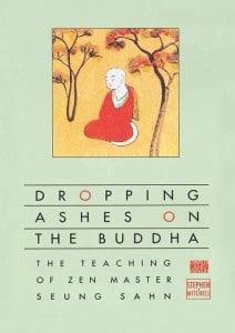 droppingashesonthebuddha